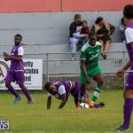Football Bermuda, January 1 2016 (37)