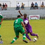 Football Bermuda, January 1 2016 (43)