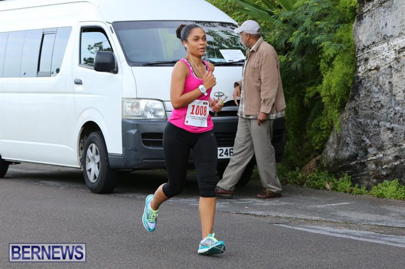 Goslings-To-Fairmont-Southampton-Race-Bermuda-January-10-2016-177