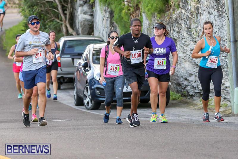Goslings-To-Fairmont-Southampton-Race-Bermuda-January-10-2016-196