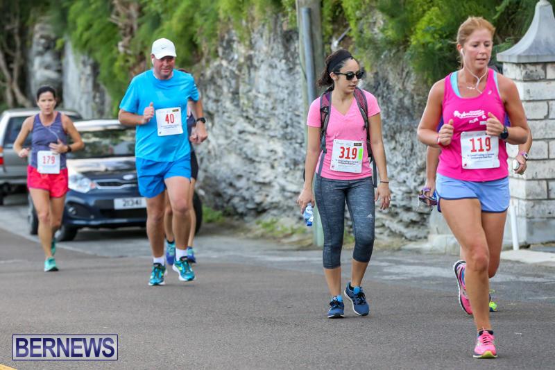 Goslings-To-Fairmont-Southampton-Race-Bermuda-January-10-2016-198