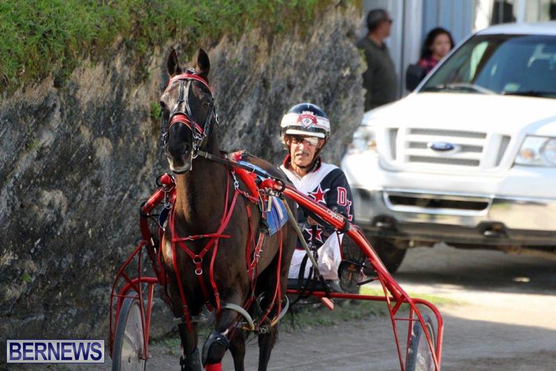 Harness-Pony-Racing-Bermuda-Jan-13-2016-13