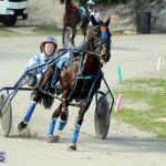 Harness Pony Racing Bermuda Jan 13 2016 (16)