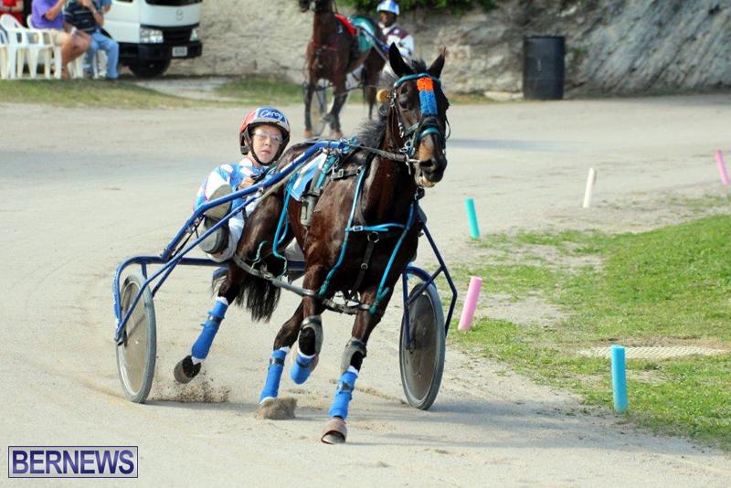 Harness-Pony-Racing-Bermuda-Jan-13-2016-16