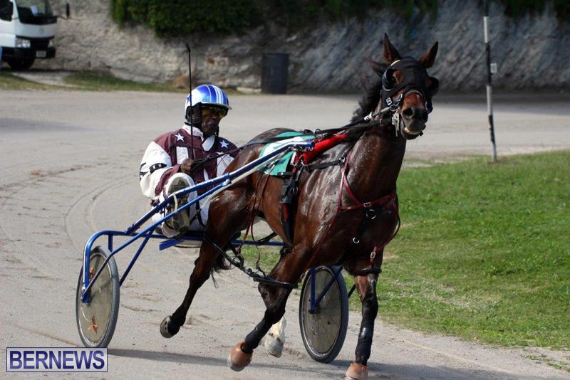 Harness-Pony-Racing-Bermuda-Jan-13-2016-17