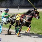 Harness Pony Racing Bermuda Jan 13 2016 (19)