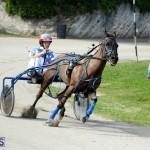 Harness Pony Racing Bermuda Jan 13 2016 (3)
