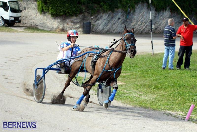 Harness-Pony-Racing-Bermuda-Jan-13-2016-3