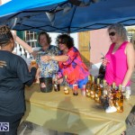 Ismay Anderson Steede 100 Year Birthday Bermuda, January 9 2016-5