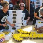 Ismay Anderson Steede 100 Year Birthday Bermuda, January 9 2016-6