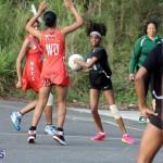 Netball Bermuda Jan 13 2016 (8)