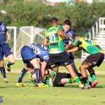 Rugby Bermuda Jan 20 2016 (1)
