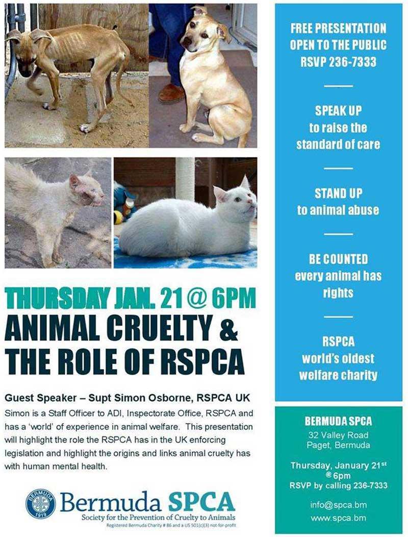 SPCA Jan 6