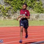 Track Bermuda, January 9 2016-41