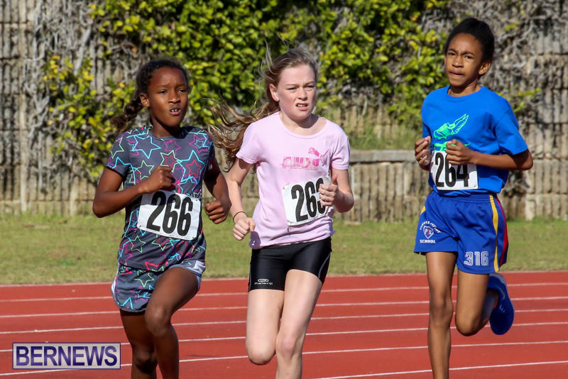 Track-Bermuda-January-9-2016-44