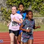 Track Bermuda, January 9 2016-45