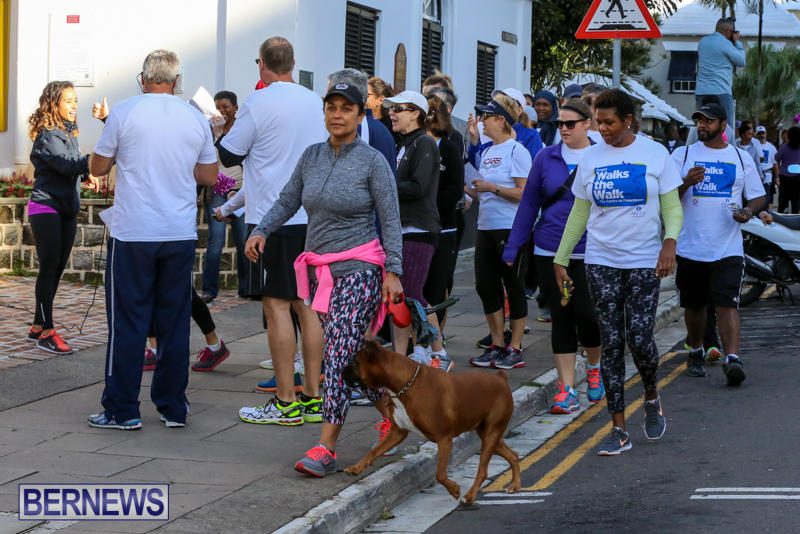 Argus-Walks-The-Walk-Bermuda-February-28-2016-3