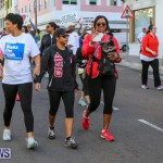 Argus Walks The Walk Bermuda, February 28 2016-54
