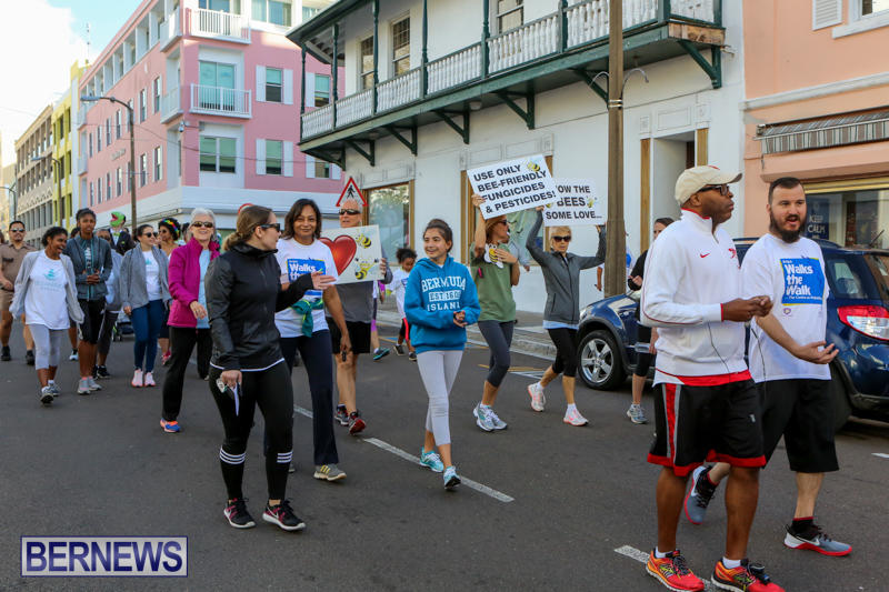 Argus-Walks-The-Walk-Bermuda-February-28-2016-59