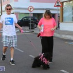Argus Walks The Walk Bermuda, February 28 2016-74