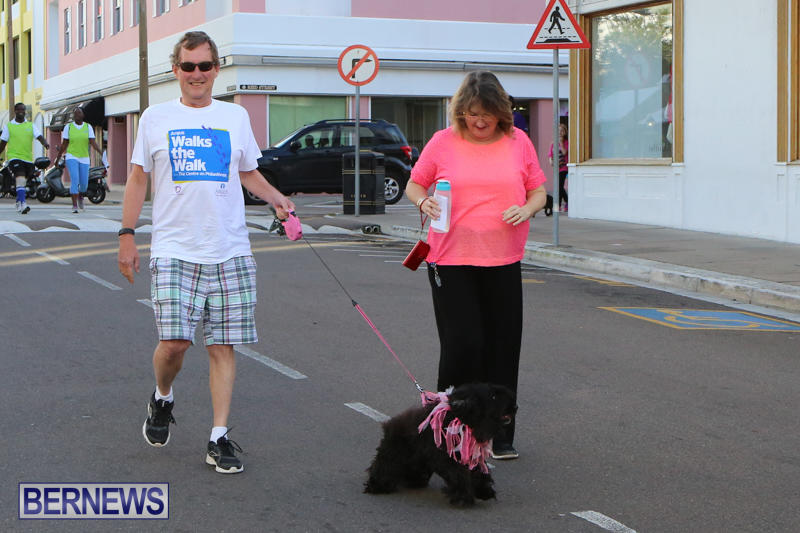 Argus-Walks-The-Walk-Bermuda-February-28-2016-74