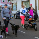 Argus Walks The Walk Bermuda, February 28 2016-88