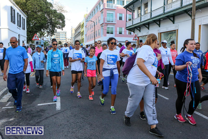 Argus-Walks-The-Walk-Bermuda-February-28-2016-9