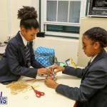 BHS Ascendant STEM Workshop Bermuda, February 23 2016-5