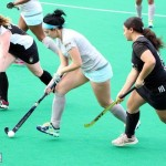 Bermuda Hockey Feb 2016 (1)