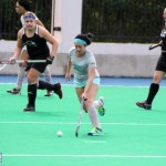 Bermuda Hockey Feb 2016 (10)