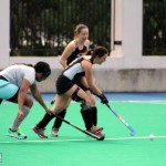 Bermuda Hockey Feb 2016 (12)