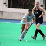 Bermuda Hockey Feb 2016 (17)