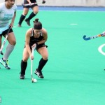 Bermuda Hockey Feb 2016 (7)