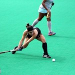 Bermuda Hockey Feb 2016 (8)