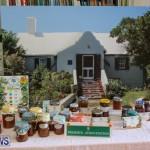 Bermuda National Trust Sale, February 13 2016-21