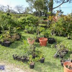 Bermuda National Trust Sale, February 13 2016-27