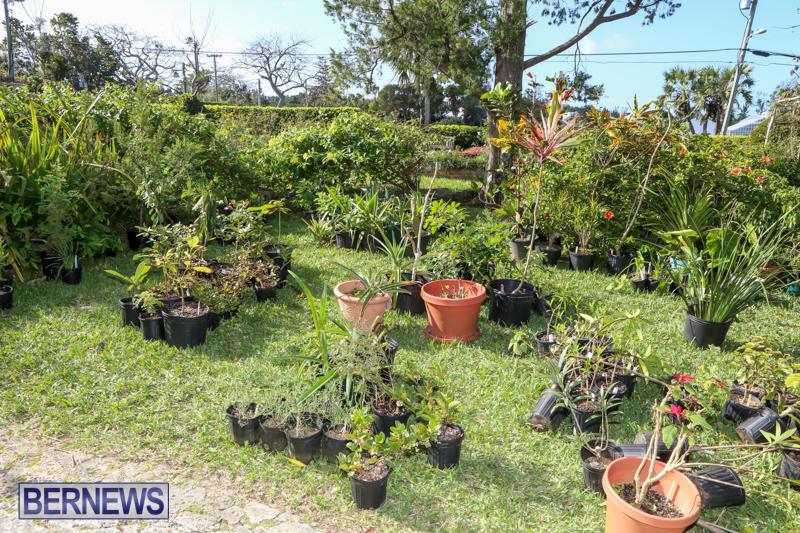 Bermuda-National-Trust-Sale-February-13-2016-27