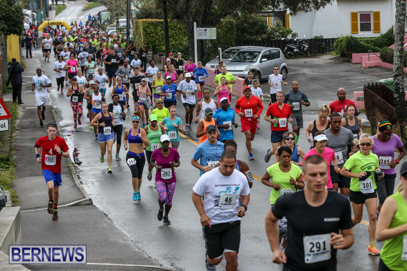 Butterfield-Vallis-5K-Run-Walk-Bermuda-February-7-2016-36