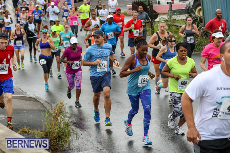 Butterfield-Vallis-5K-Run-Walk-Bermuda-February-7-2016-38