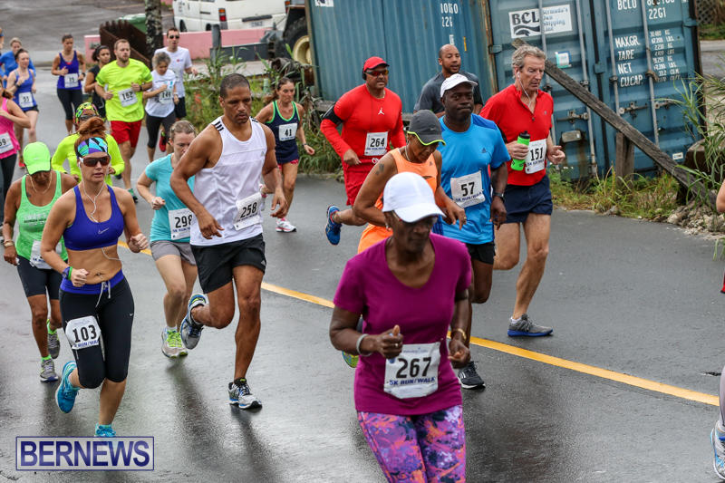 Butterfield-Vallis-5K-Run-Walk-Bermuda-February-7-2016-39