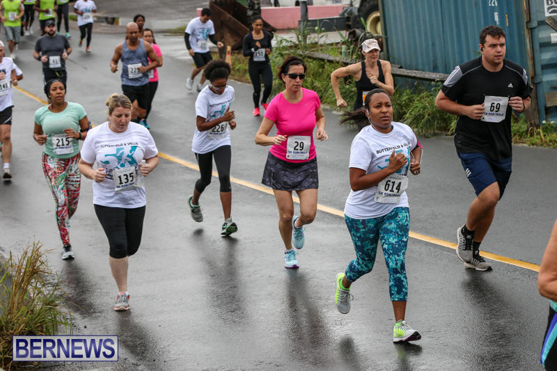 Butterfield-Vallis-5K-Run-Walk-Bermuda-February-7-2016-44