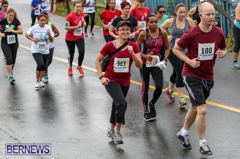 Butterfield-Vallis-5K-Run-Walk-Bermuda-February-7-2016-58