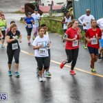 Butterfield & Vallis 5K Run Walk Bermuda, February 7 2016-59