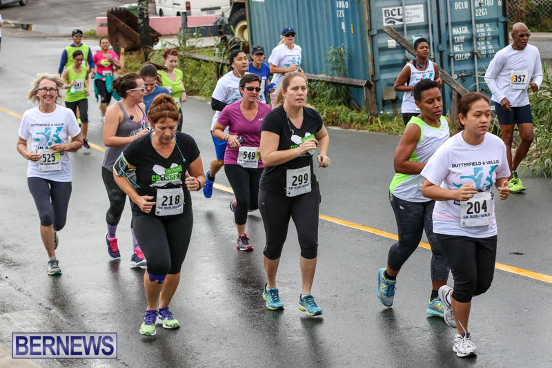 Butterfield-Vallis-5K-Run-Walk-Bermuda-February-7-2016-61