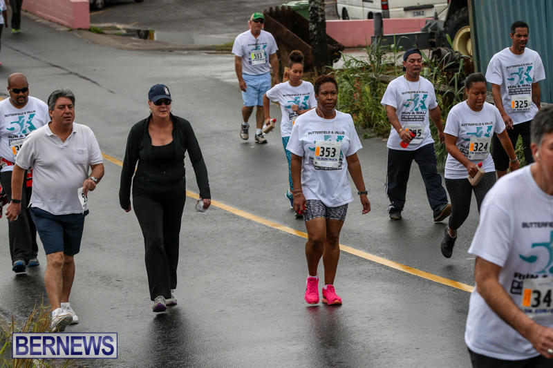 Butterfield-Vallis-5K-Run-Walk-Bermuda-February-7-2016-76