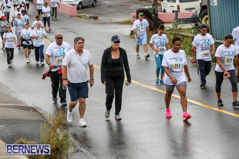 Butterfield-Vallis-5K-Run-Walk-Bermuda-February-7-2016-77