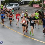 Butterfield & Vallis 5K Run Walk Bermuda, February 7 2016-8