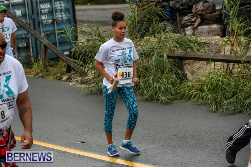 Butterfield-Vallis-5K-Run-Walk-Bermuda-February-7-2016-80