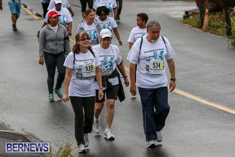 Butterfield-Vallis-5K-Run-Walk-Bermuda-February-7-2016-81