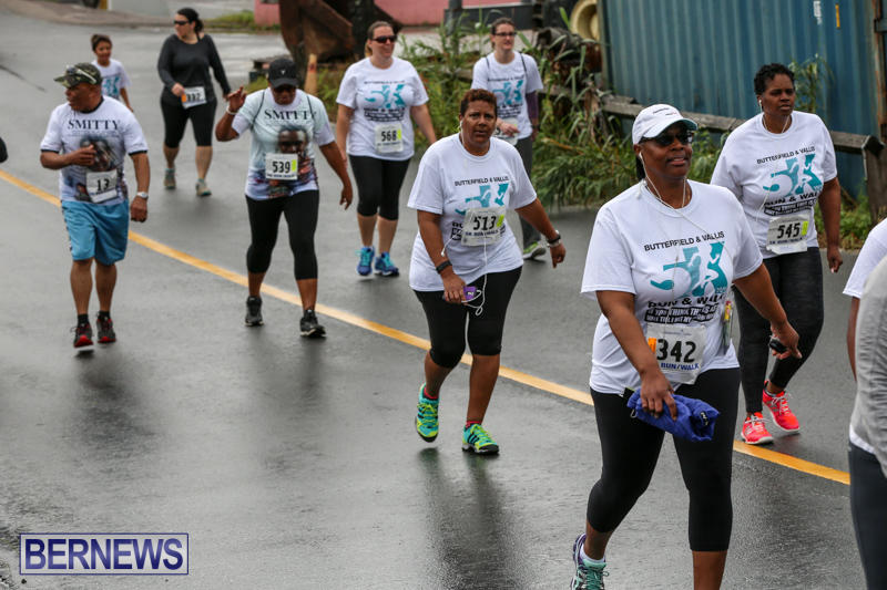 Butterfield-Vallis-5K-Run-Walk-Bermuda-February-7-2016-84